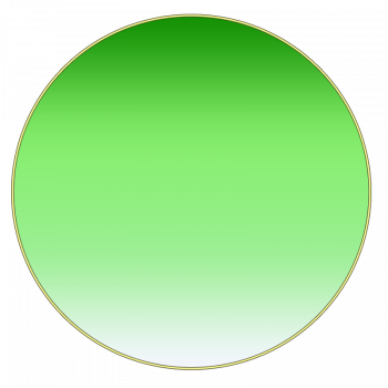 Fourth circle = Your Great Grand Parents in gradient green