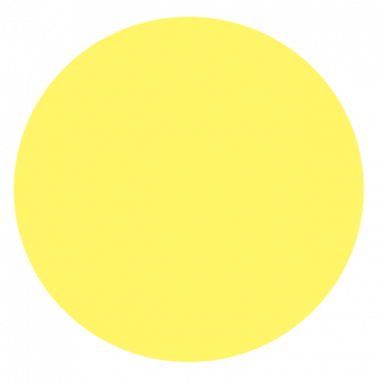 Third circle = Your Grand Parents in solid yellow